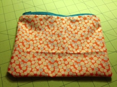 A Nice Pouch For Sewing Notions!